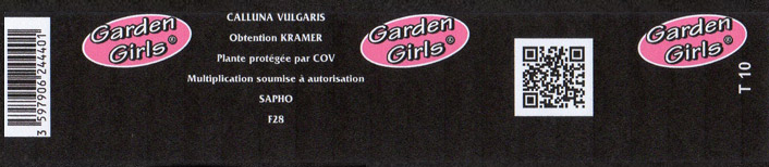 Gencode-garden-girl-401