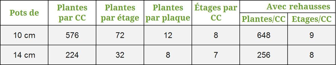 conditionnement-callunas-10cm-14cm